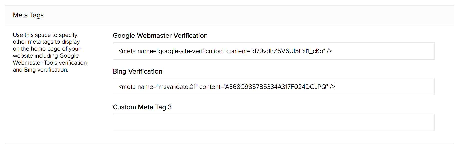 Where to enter meta tags provided by Google Webmaster Tools or Bing